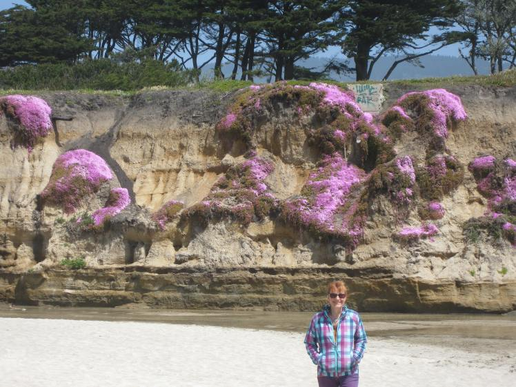 Half Moon Bay Cliffs with Ice Flowers April 28, 2013
