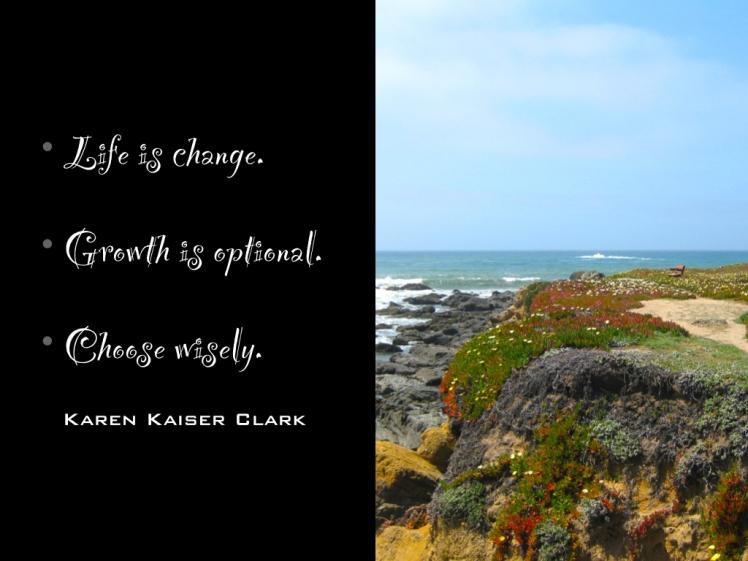Life Is Change.001