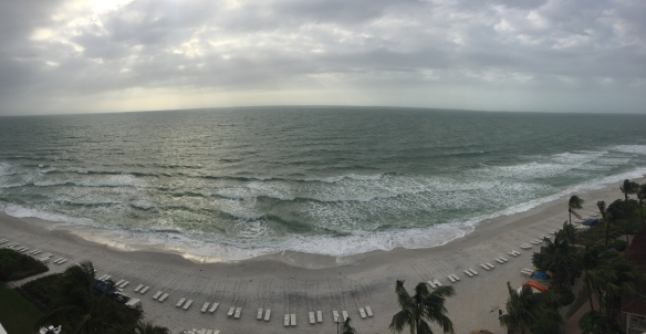 2016-01-22 Naples Stormy Day