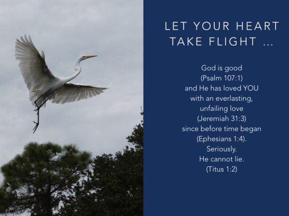 let-your-heart-take-flight-001