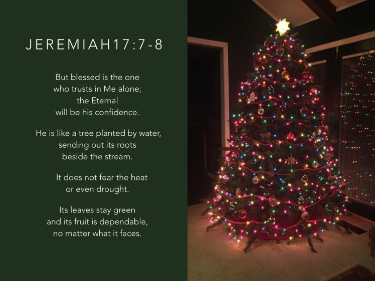 jeremiah-17_7-8-002